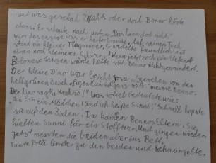 Fortsetzung zu Bennos Tagebuch | Caruso Club | Theater Schloss Maßbach